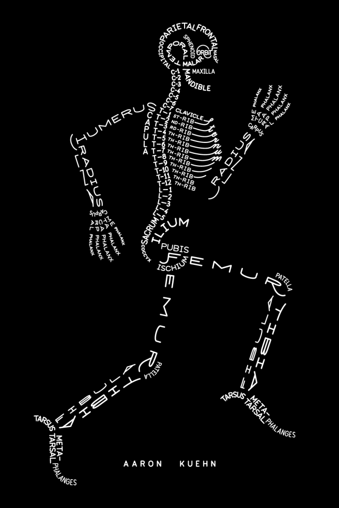 Typogram of a skeleton, using the names of the bones to make the skeleton.